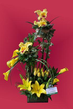 Ramo de flores Orquideas y Tulipanes