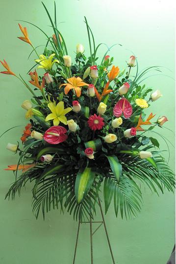 Flores Para Inauguración Comprar En Miraflores