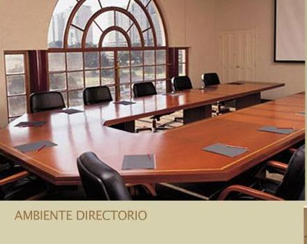 Comprar Ambiente Directorio Canziani Ufficio