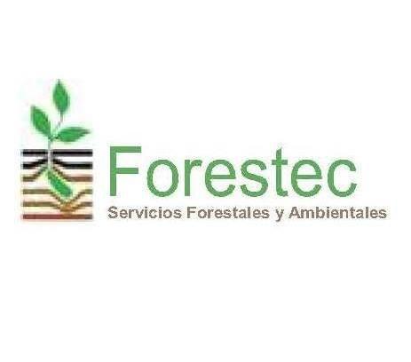 Comprar Semillas forestales