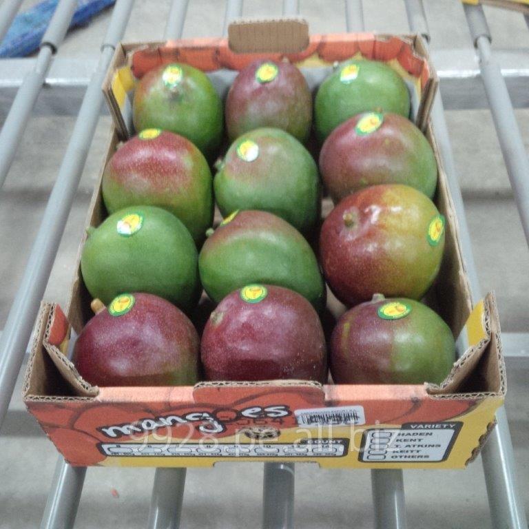 Comprar Mango Kent