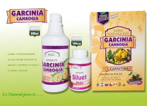 Comprar DUO PACK GARCINIA GAMBOGIA