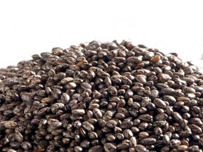 Black Chia Grain