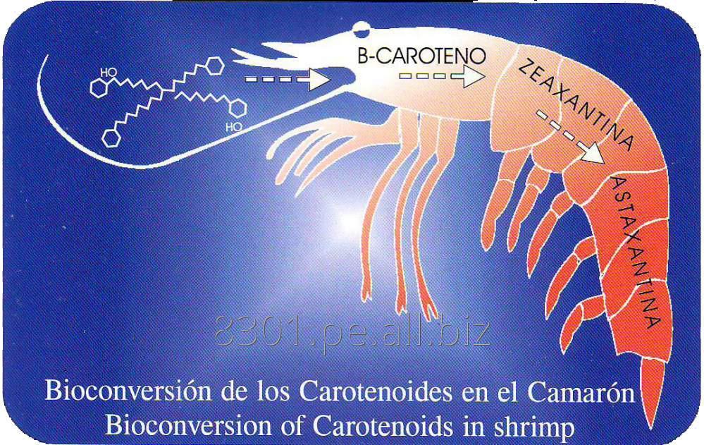 Comprar Crustaphyll - Pigmentante para Crustaceos