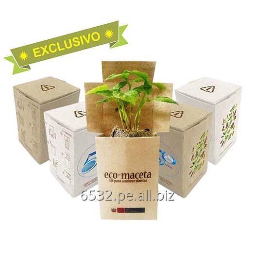 Comprar Eco Maceta Ecológica ECO REGALOS en cajita Reciclada
