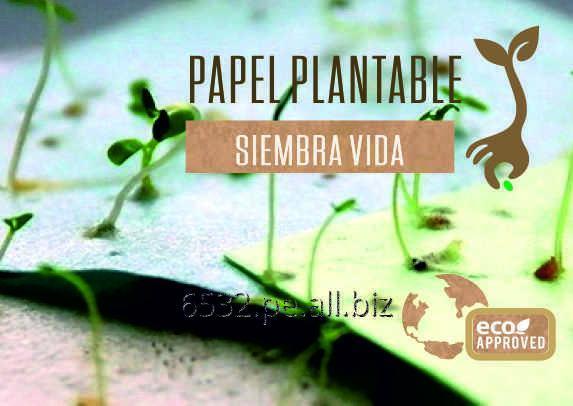Comprar Regalos Ecologicos Peru