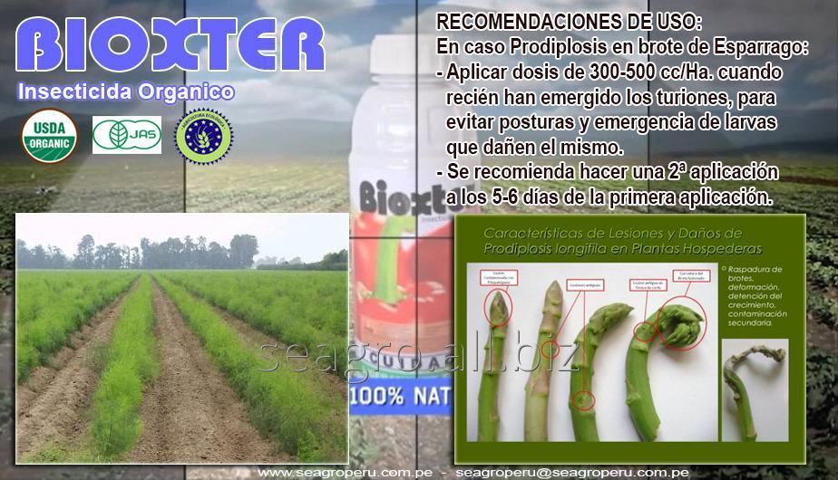 Comprar BIOXTER Insecticida Organico