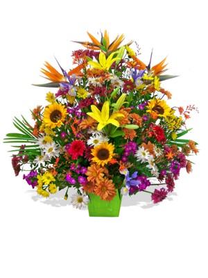 ramo de flores silvestres primaveral premium - Ramos De Flores Silvestres