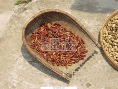 Paprika En Seco