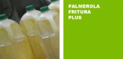 Palmerola fritura plus