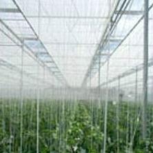 Aislamiento térmico para invernaderos
