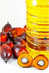 Aceite Crudo de Palmiste