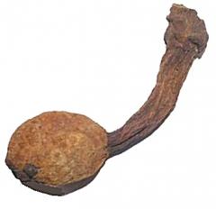 Huanarpo