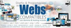 Diseño y Programación de Páginas Web