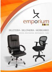 Sillas giratorias, sillas fijas, carpetas unipersonales, carpetas bipersonales, escritorios Mobiliario en general.