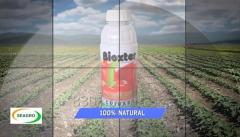 BIOXTER - Insecticide Organic