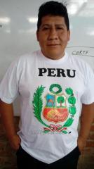 Polo de Algodon Escudo Peru