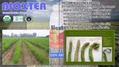 BIOXTER Insecticida Organico