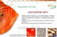 Astafeed - Astaxantina of 10% Feed