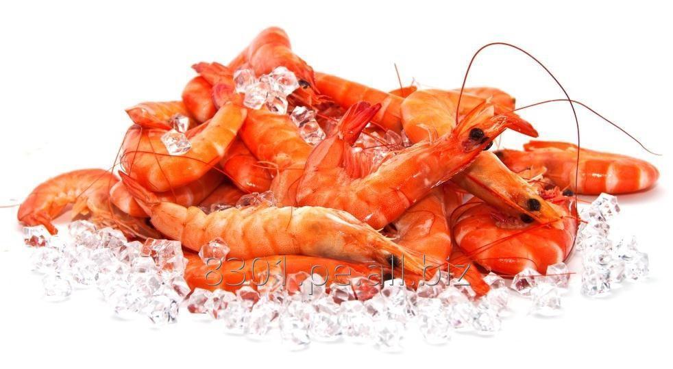 crustaphyll_pigmentante_para_crustaceos