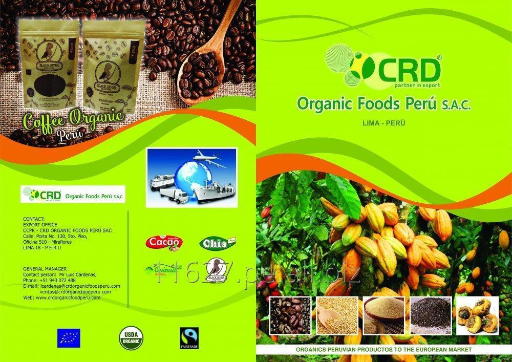 cacao_organico_y_convencional