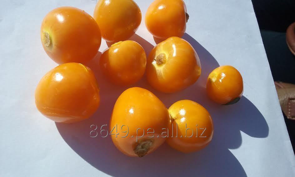 dried_goldenberry