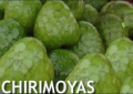 Chirimolla
