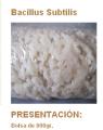 Biocontroladores,Bacillus Subtilis.