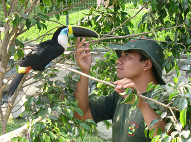 Pedido Servicio de Zoo Criadero
