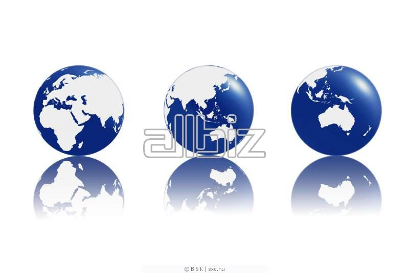 Pedido Servicios de organización de exportaciónes