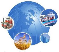 Pedido Servicios de organización de importaciones