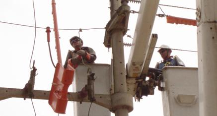 Pedido Mantenimiento de redes y líneas de energía