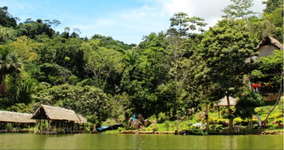 Pedido Turismo en la Selva del Peru
