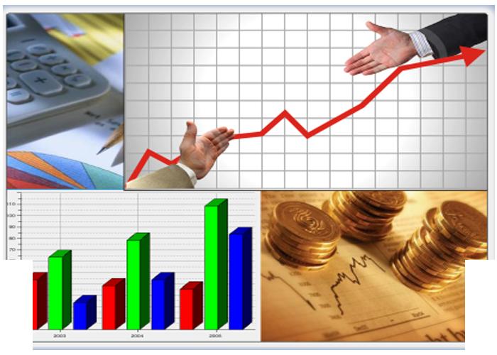 Pedido Servicios de análisis financiero de empresa