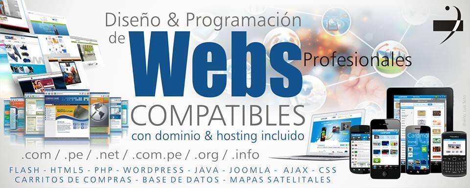Pedido Diseño y Programación de Paginas Web