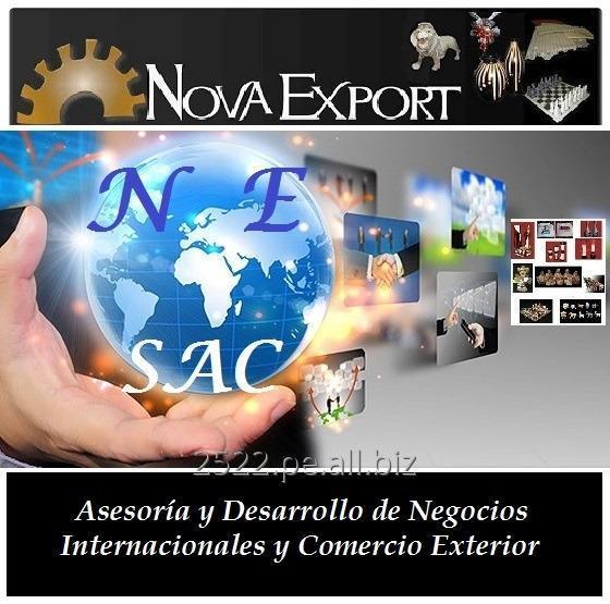 Pedido Asesoría y Desarrollo Integral de Exportaciones E Importaciones - Outsourcing de Comercio Exterior