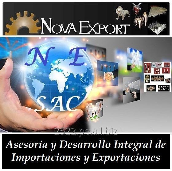 Pedido Asesoría y Desarrollo de Importaciones y Exportaciones - Comercio Exterior