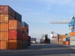 Customs consulting