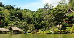 Turismo en la Selva del Peru