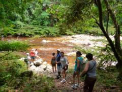 Grupos de Aventura, viajes atravesando la selva