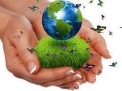 Gestion de medio ambiente