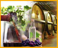 Degustaciones Pisco y vino