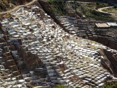 Excursions to salt mines