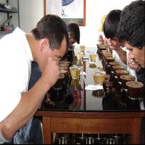 Laboratorio de calidad de cafe