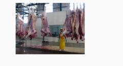 Ventas y distribución de carnes y menudencias