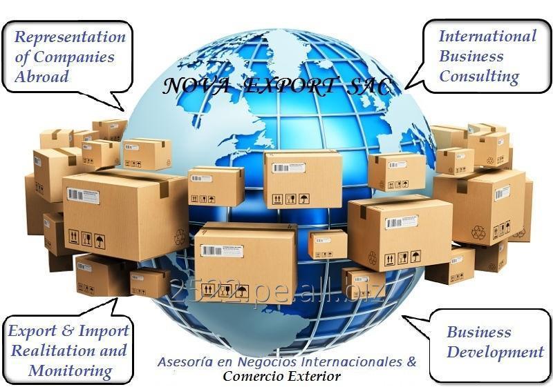 asesora_y_desarrollo_de_importaciones_y
