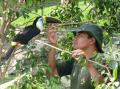 Servicio de Zoo Criadero
