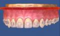 Servicio de Ortodoncia