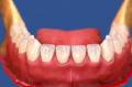 Servicio de Odontopediatria
