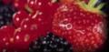 Comercio frutas y verduras